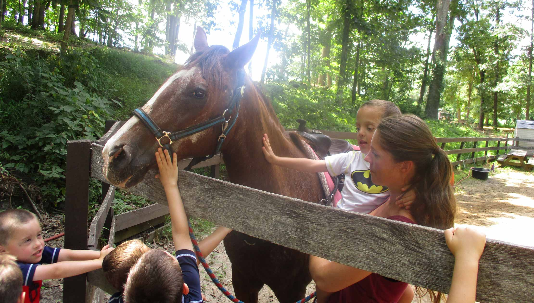 Kids and staff petting a horse